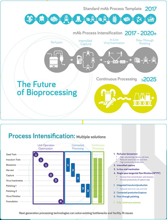 Facing the future-MS